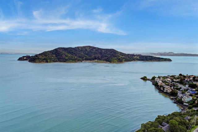 2641 Paradise Drive, Tiburon, CA 94920 (#21905209) :: Rapisarda Real Estate