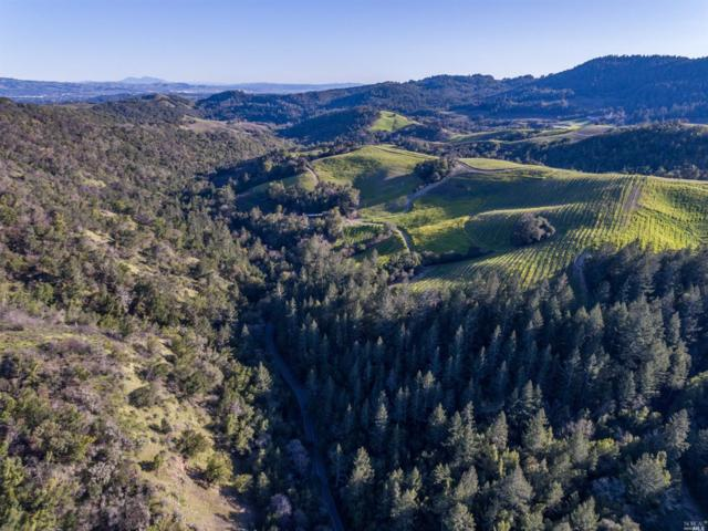 0 Mount Veeder Road, Napa, CA 94558 (#21905607) :: Michael Hulsey & Associates