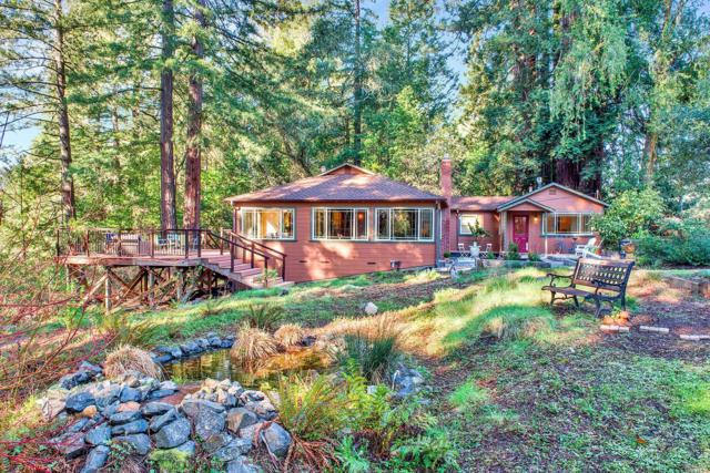 16335 Wright Drive, Guerneville, CA 95446 (#21905662) :: RE/MAX GOLD