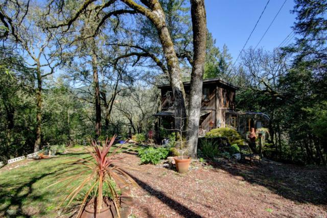 9858 Hillside Drive, Forestville, CA 95436 (#21906129) :: Rapisarda Real Estate