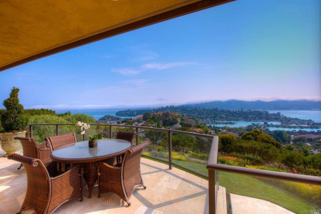 11 Acela Drive, Tiburon, CA 94920 (#21906155) :: Rapisarda Real Estate