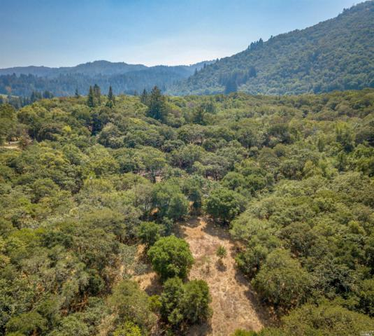 7979 Sonoma Mountain Road, Glen Ellen, CA 95442 (#21906173) :: RE/MAX GOLD