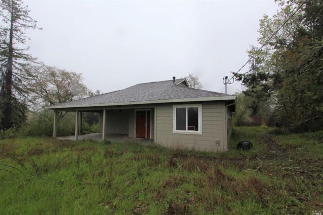 1076 Drew Lane, Sebastopol, CA 95472 (#21906182) :: Rapisarda Real Estate