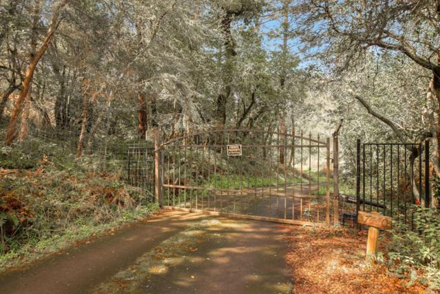 17440 Taylor Lane, Occidental, CA 95465 (#21906263) :: Rapisarda Real Estate