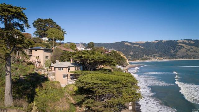 49 Terrace Avenue, Bolinas, CA 94924 (#21906410) :: Rapisarda Real Estate