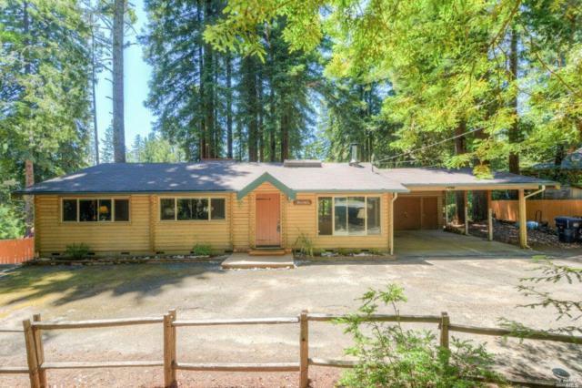45640 Pacific Woods Road, Gualala, CA 95445 (#21906629) :: Rapisarda Real Estate