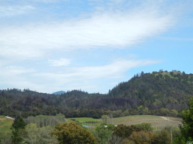 0 Franz Valley Road, Calistoga, CA 95415 (#21906759) :: RE/MAX GOLD
