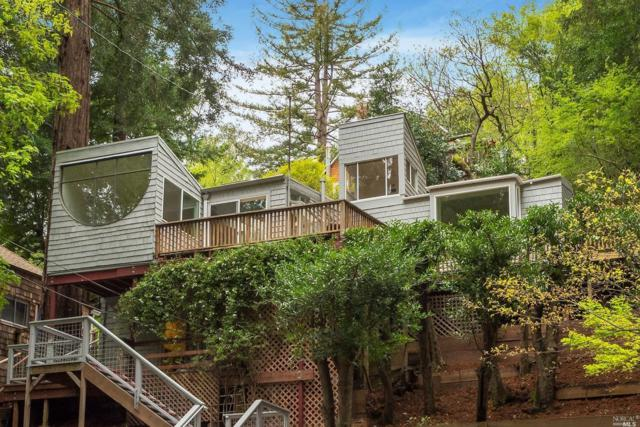 264 Madrone Avenue, Larkspur, CA 94939 (#21906868) :: Lisa Imhoff | Coldwell Banker Kappel Gateway Realty