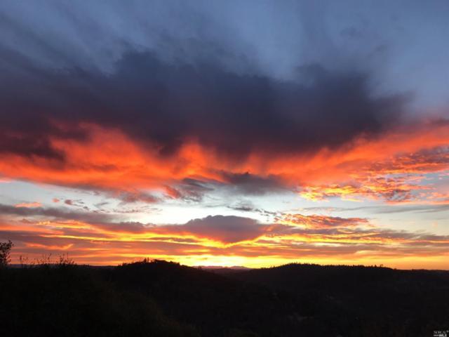 17750 Wallis Drive, Grass Valley, CA 95949 (#21906961) :: RE/MAX GOLD