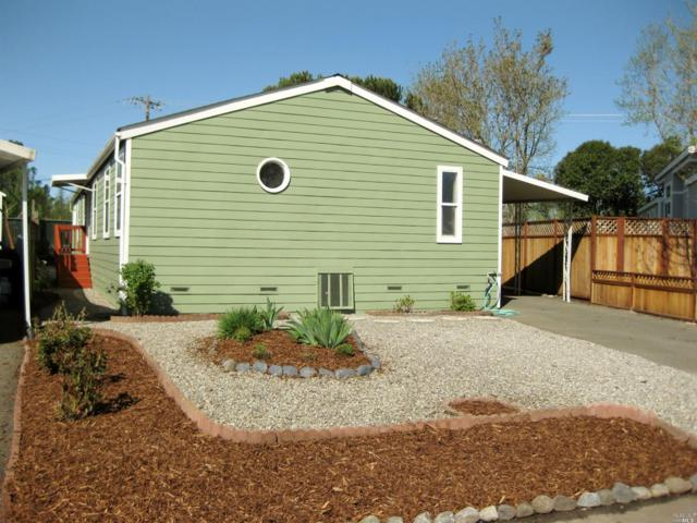 300 Stony Point Road #109, Petaluma, CA 94952 (#21907216) :: RE/MAX GOLD