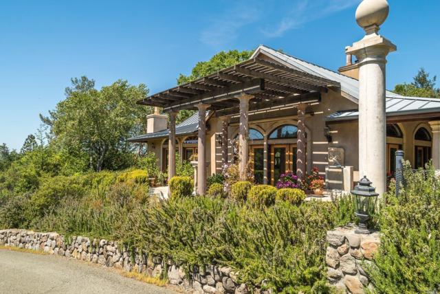 6400 Sharp Road, Calistoga, CA 94515 (#21907726) :: W Real Estate | Luxury Team