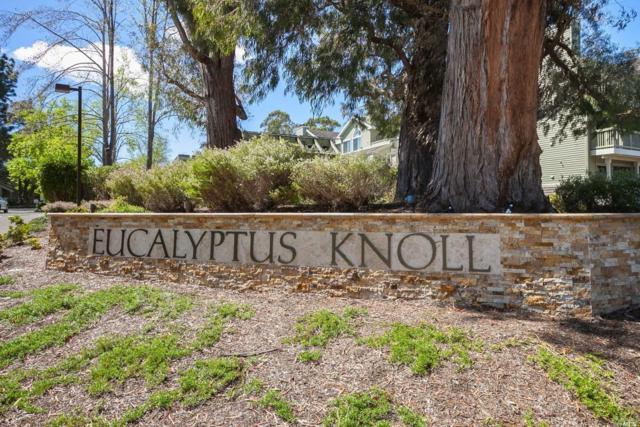 51 Eucalyptus Knoll Street, Mill Valley, CA 94941 (#21907731) :: Lisa Imhoff   Coldwell Banker Kappel Gateway Realty