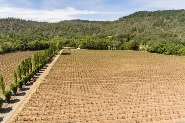 4645 Chiles Pope Valley Road, St. Helena, CA 94574 (#21907912) :: Michael Hulsey & Associates