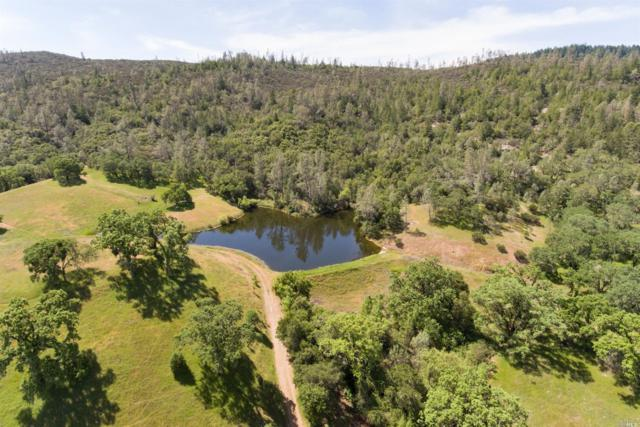 0 Chiles Pope Valley Road, St. Helena, CA 94574 (#21907913) :: Michael Hulsey & Associates