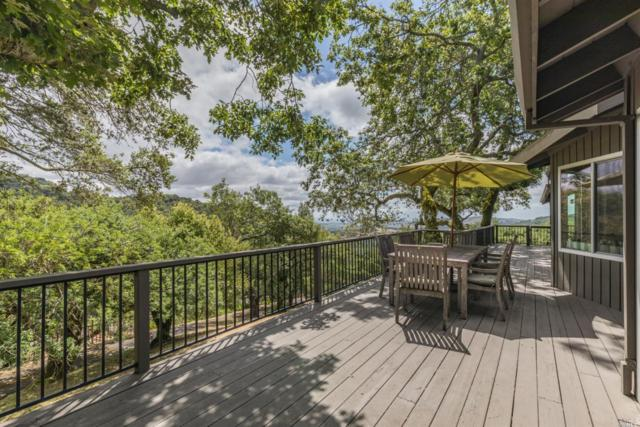 18761 Canyon Road, Sonoma, CA 95476 (#21907942) :: RE/MAX GOLD