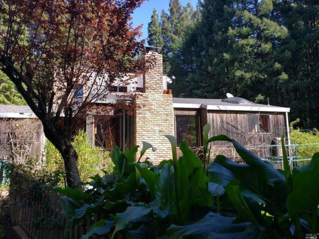 38221 Ocean Ridge Drive, Gualala, CA 95445 (#21907982) :: Rapisarda Real Estate