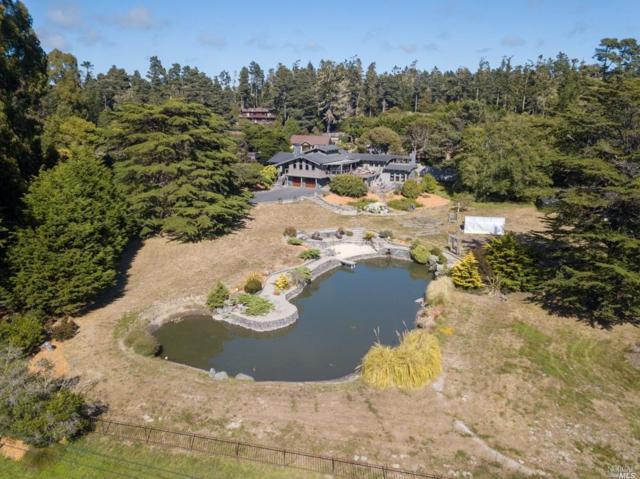 17401 Ocean Drive, Fort Bragg, CA 95437 (#21908155) :: Michael Hulsey & Associates