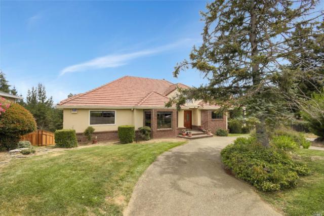 4 Lone Oak Court, Petaluma, CA 94952 (#21908188) :: Rapisarda Real Estate