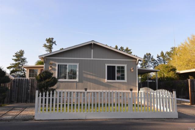 202 Mccoy Avenue, Santa Rosa, CA 95407 (#21908228) :: Michael Hulsey & Associates