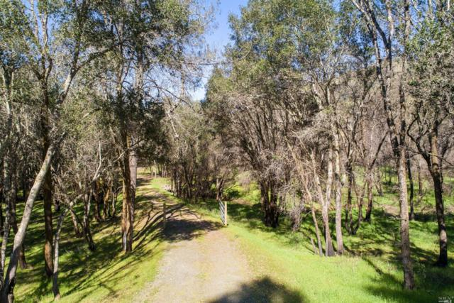 8535 Franz Valley School Road, Calistoga, CA 94515 (#21908377) :: RE/MAX GOLD