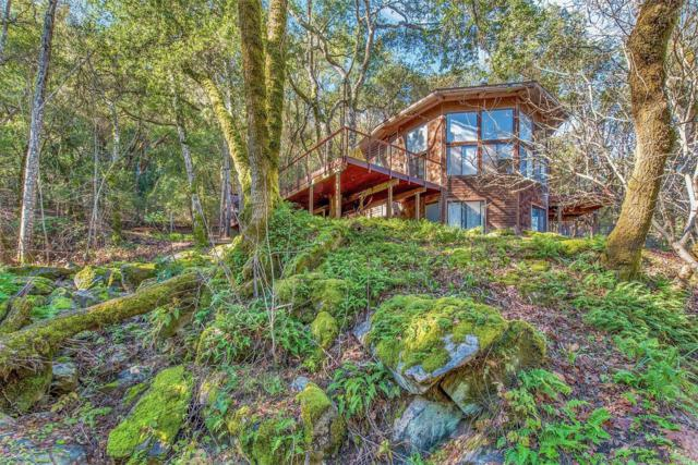 1799 Foxridge Road, Geyserville, CA 95441 (#21908444) :: Rapisarda Real Estate