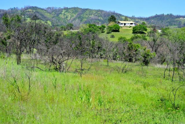 1527-1539 Riebli Road, Santa Rosa, CA 95404 (#21908496) :: W Real Estate | Luxury Team