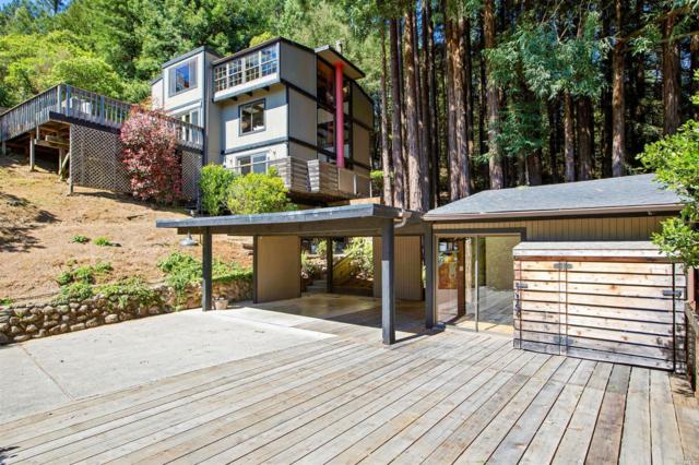 14 Bay Tree Lane, Mill Valley, CA 94941 (#21908513) :: Lisa Imhoff   Coldwell Banker Kappel Gateway Realty