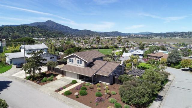 33 Balclutha Drive, Corte Madera, CA 94925 (#21908527) :: Lisa Perotti | Zephyr Real Estate