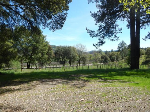 8341 Franz Valley Road, Calistoga, CA 94515 (#21908721) :: RE/MAX GOLD