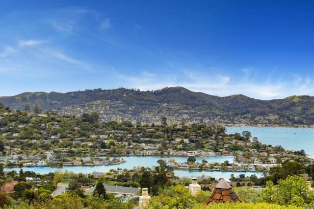 35 Meadow Hill Drive, Tiburon, CA 94920 (#21908732) :: Intero Real Estate Services