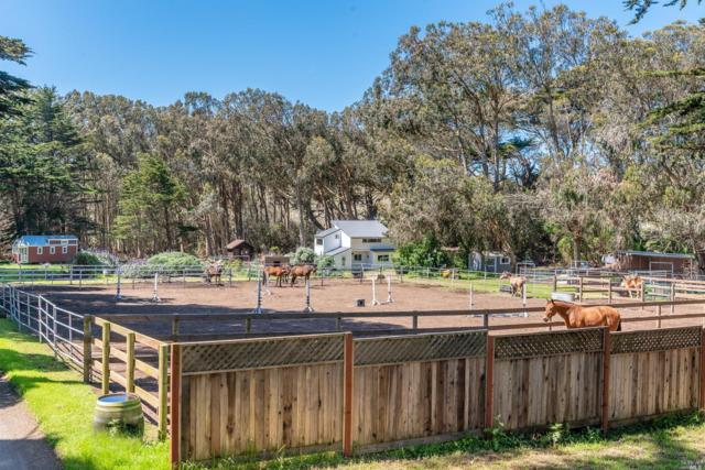1925 Bay Flat Road, Bodega Bay, CA 94923 (#21908879) :: RE/MAX GOLD