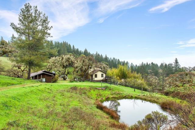 9000 Orr Springs Road, Ukiah, CA 95482 (#21909012) :: Rapisarda Real Estate