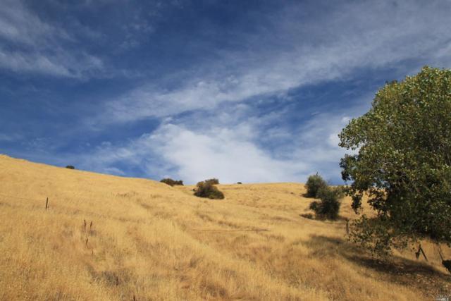 0 032-280-58-00 Mendocino Pass Road, Covelo, CA 95428 (#21909093) :: Michael Hulsey & Associates