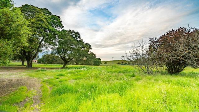 5266 Old Sonoma Road, Napa, CA 94559 (#21909120) :: W Real Estate | Luxury Team
