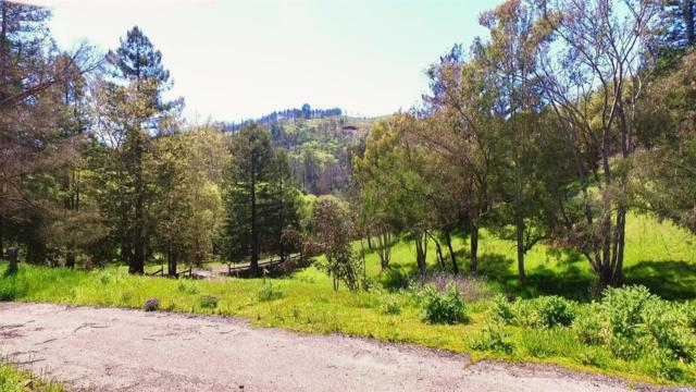 8355 Foothill Ranch Road, Santa Rosa, CA 95404 (#21909212) :: Perisson Real Estate, Inc.