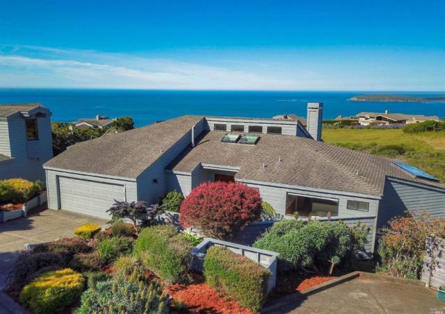 819 Owl Court, Bodega Bay, CA 94923 (#21909449) :: Rapisarda Real Estate