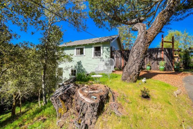 115 Tamarack Road, San Geronimo, CA 94963 (#21909704) :: Intero Real Estate Services