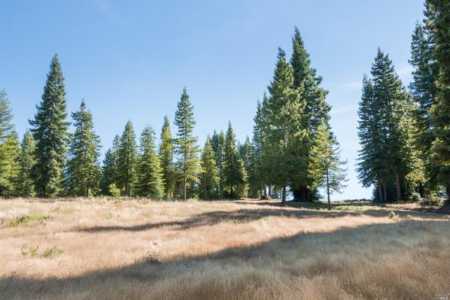 0 Van Zandt Road, Philo, CA 95466 (#21909927) :: Intero Real Estate Services
