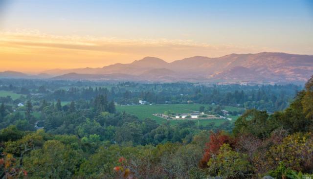 34 Old Coach Road, Napa, CA 94558 (#21910605) :: W Real Estate | Luxury Team