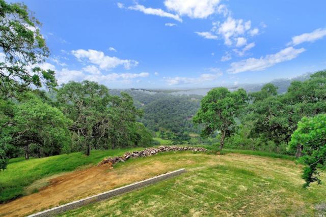 0 Grandview Road, Napa, CA 94558 (#21910627) :: Rapisarda Real Estate