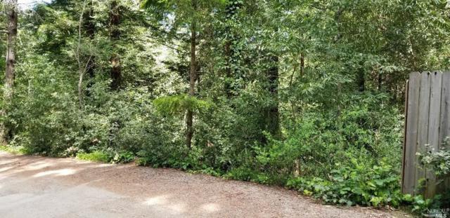 10895 Terrace Drive, Forestville, CA 95436 (#21910641) :: RE/MAX GOLD