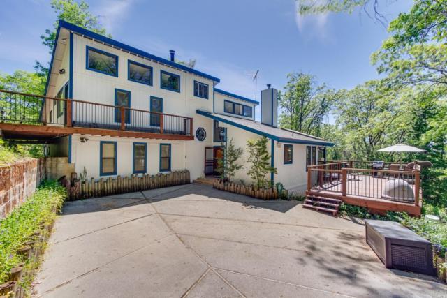 14226 Storm Ridge Road, Grass Valley, CA 95945 (#21910701) :: W Real Estate | Luxury Team