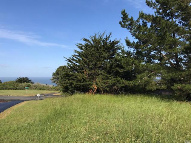 5471 Sierra Grande Drive, Bodega Bay, CA 94923 (#21910743) :: RE/MAX GOLD