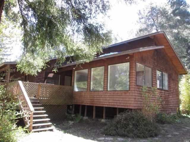 29850 Ten Mile Cut Off Road, Point Arena, CA 95468 (#21910888) :: Intero Real Estate Services