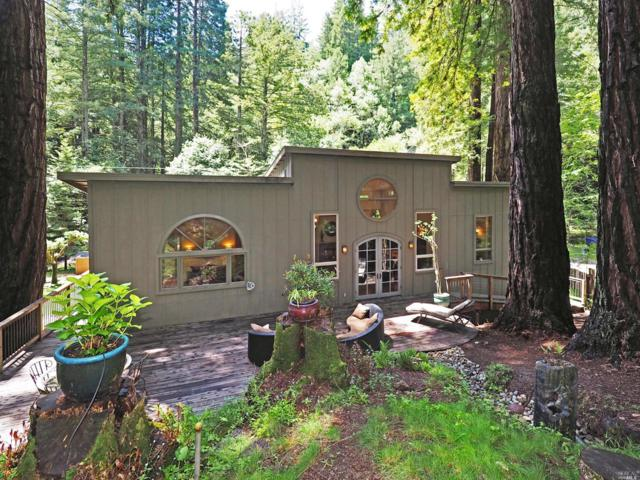 2589 Bohemian Highway, Occidental, CA 95465 (#21911128) :: RE/MAX GOLD