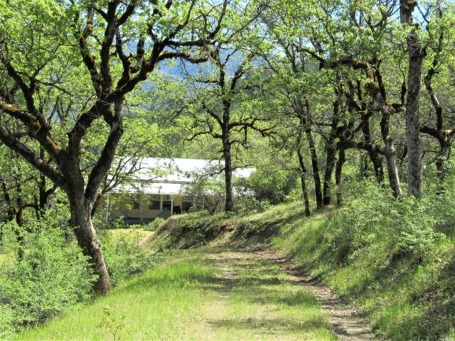 3100 Eel River Ranch Road, Covelo, CA 95428 (#21911341) :: W Real Estate | Luxury Team