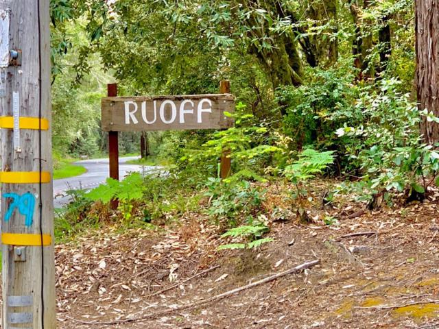 22107 Ruoff Road, Jenner, CA 95450 (#21911367) :: RE/MAX GOLD