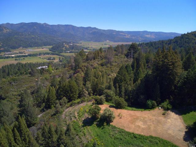 1511 Diamond Mountain Road, Calistoga, CA 94515 (#21911416) :: Intero Real Estate Services
