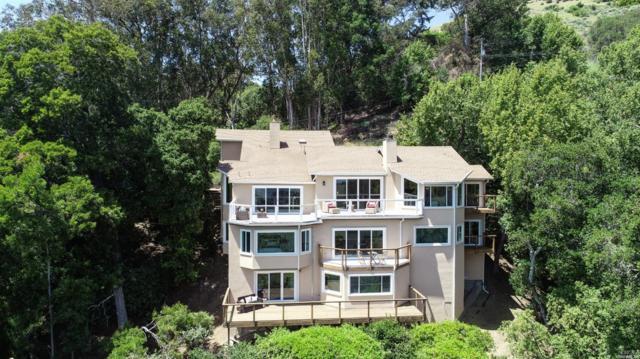 292 Margarita Drive, San Rafael, CA 94901 (#21911424) :: Rapisarda Real Estate