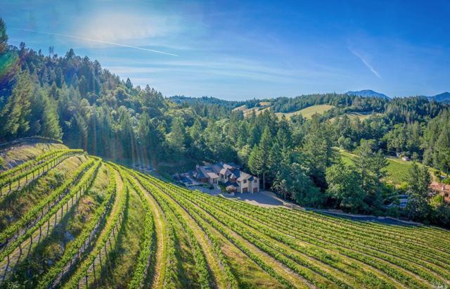 1395 Diamond Mountain Road, Calistoga, CA 94515 (#21911631) :: Intero Real Estate Services